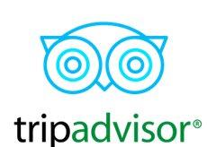 Tripadvisor Free Tour Valencia
